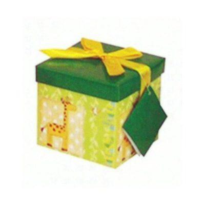 Πράσινο Κουτί δώρου με καμηλοπάρδαλη