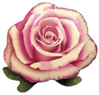 Μπαλόνι Ροζ Τριαντάφυλλο 56 εκ