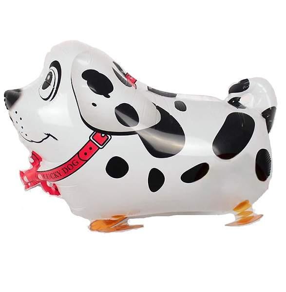 Μπαλόνι σκυλάκι Δαλματίας που περπατάει