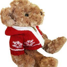 Χνουδωτό Αρκουδάκι με Χριστουγεννιάτικο πλεκτό