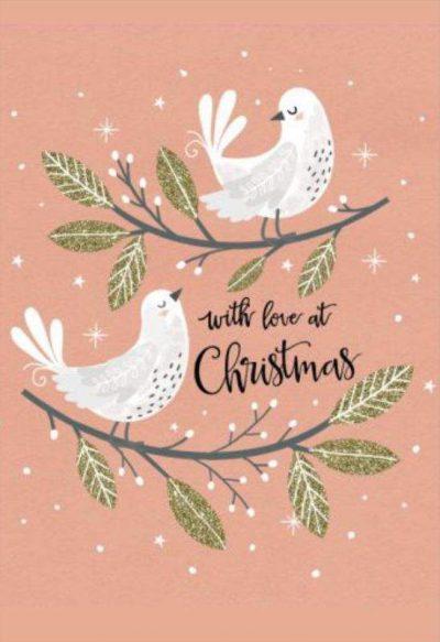 Χριστουγεννιάτικη κάρτα ερωτευμένα πουλάκια