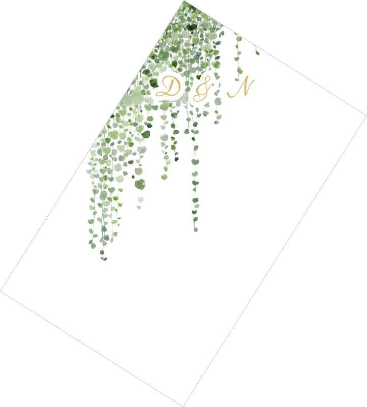 Χωνάκια ρυζιού Φύλλα
