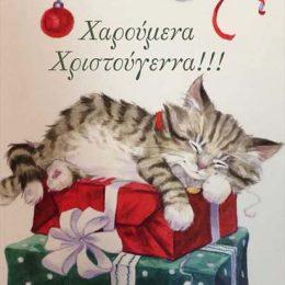 """Χριστουγεννιάτικη κάρτα γατούλα """"Χαρούμενα Χριστούγεννα"""""""