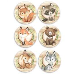 Σετ κονκάρδες Ζώα του Δάσους (6 τεμ)
