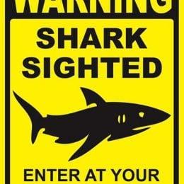 Αφίσα πάρτυ Baby Shark (σχέδιο 2)