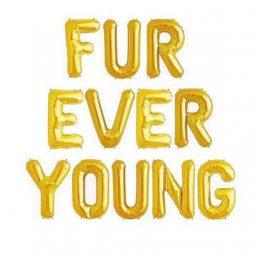 Μπαλόνι Fur Ever Young χρυσό 40εκ