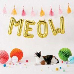Μπαλόνι Meow χρυσό 40 εκ