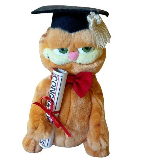 Λούτρινο Garfield Απόφοιτος