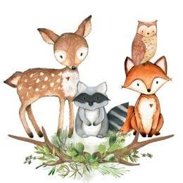 Ζώα του Δάσους