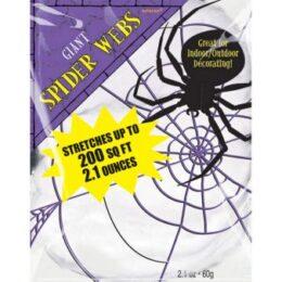Διακοσμητικός Ιστός Αράχνης – Φωσφορίζει στο σκοτάδι