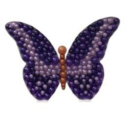 Πλαίσιο μπαλονιών Πεταλούδα
