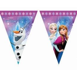Τριγωνικά Σημαιάκια Frozen Northen Lights
