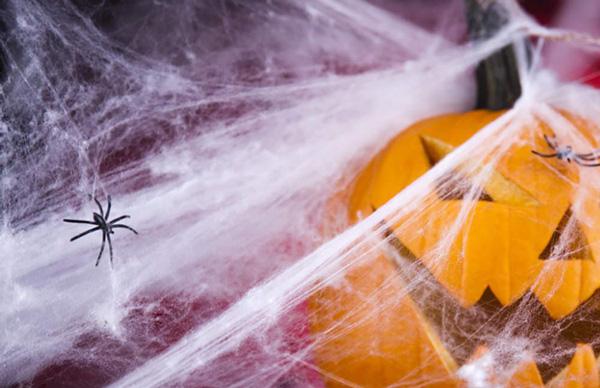 αράχνες και τέρατα