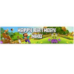 Banner Minecraft με μήνυμα