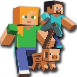 Είδη πάρτυ Minecraft
